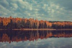 有黄色树和湖的,多云天空秋天森林 库存图片