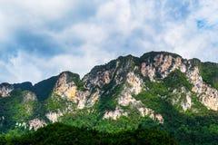 有绿色树的山景城 免版税库存照片