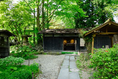 有绿色树的日本庭院在夏天 免版税库存照片