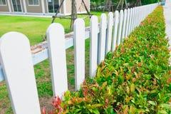 有绿色植物树篱的白色木尖桩篱栅 库存照片