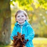 有黄色秋叶的小孩男孩在公园 库存照片