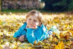 有黄色秋叶的小孩男孩在公园 免版税图库摄影