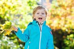 有黄色秋叶的小孩男孩在公园 免版税库存照片