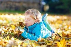 有黄色秋叶的小孩男孩在公园 库存图片