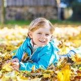 有黄色秋叶的小孩男孩在公园 图库摄影