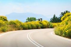 有黄色花的空的柏油碎石地面路 免版税库存图片