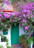 有紫色花的绿色门房子 库存照片
