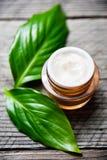 有绿色草本叶子的化妆瓶容器,烙记的大模型的空白的标签, 免版税库存照片