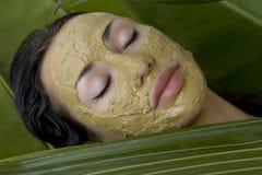 有绿色草本黏土面部面具的,秀丽温泉妇女 免版税库存照片