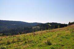 有绿色草甸的山岭地区 库存照片
