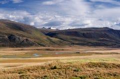 有黄色草的高地河谷在积雪的山和冰川背景  免版税库存图片