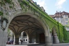 有绿色藤的一座桥梁在苏黎世 库存图片