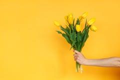 有黄色郁金香的庄稼手 免版税库存图片