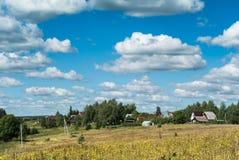 有黄色野花的草甸在村庄附近 免版税图库摄影