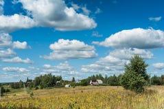 有黄色野花的草甸临近村庄 免版税库存照片
