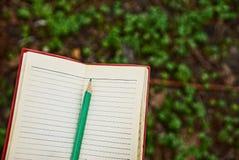 有绿色铅笔的被打开的笔记本 库存图片
