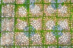 有绿色青苔的石走道 免版税库存图片