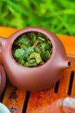 有绿色oolong的茶壶 免版税图库摄影