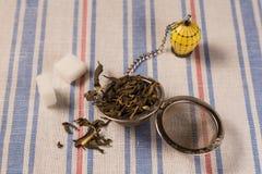 有绿茶干燥叶子的滤茶器  库存照片