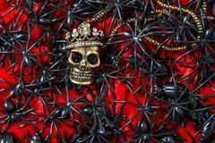 有黑蜘蛛的头骨在血淋淋的红色背景 免版税库存图片