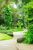 有绕道路的美丽的绿园 免版税库存照片