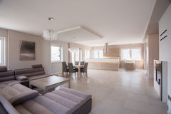 有绒面革沙发的宽敞室 免版税库存图片
