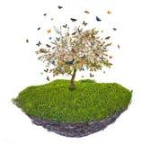 有butterfies的海岛在绿草和春天苹果树上 库存图片