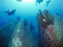 有caral的礁石的潜水者 库存图片