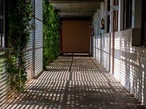 有casted的阴影的走廊 库存图片