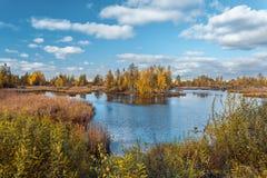 有cloudscape的森林湖 免版税库存图片