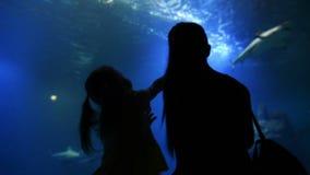 有Cutie孩子的母亲在母亲节参观Oceanarium 母亲向女孩这个美丽和有趣的世界显示 影视素材