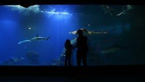 有Cutie孩子的母亲在母亲节参观Oceanarium 母亲向女孩这个美丽和有趣的世界显示 股票录像