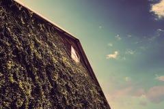 有eco友好的绿色墙壁的木仓库有蓝天的 免版税库存图片