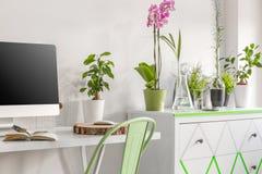 有eco灵魂的家庭办公室 免版税库存照片