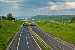 有ecoduct的空的沥青高速公路 免版税库存照片