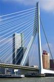有Erasmus桥梁和摩天大楼的鹿特丹 免版税库存图片