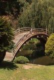 有koi池塘的日本庭院 免版税库存图片
