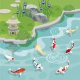 有koi池塘的日本庭院 免版税库存照片