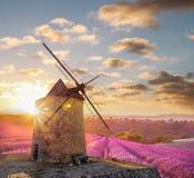 有levander领域的风车反对五颜六色的日落在普罗旺斯,法国 库存照片
