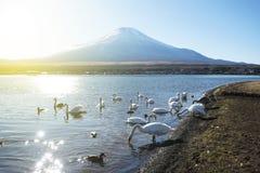 有Mt的Yamanaka湖 富士背景 免版税库存图片