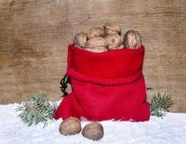 有nutlets的新年的大袋 免版税库存照片