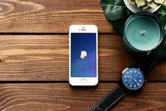 有PayPay付款的app苹果计算机智能手机 平的位置有木桌背景 多汁植物,手表, monstera叶子  库存图片