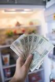 有PLN金钱的手在开放冰箱前面 库存图片