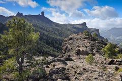 有Roque的Nublo全景 canaria gran 库存照片
