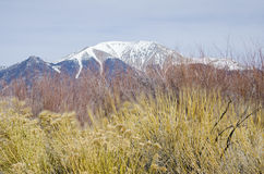 有Sangre de克里斯多Mountains的高山峰顶的大沙丘国家公园 免版税库存图片