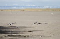 有Sangre de克里斯多Mountains的高山峰顶的大沙丘国家公园 库存照片
