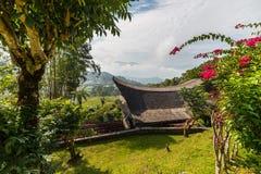 有tipical小船的一点传统村庄在美丽的露台的稻米和密林中的田园诗地点塑造了屋顶  免版税库存图片