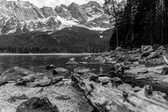 有zugspitze山脉的Eibsee湖德国在黑白的背景中 库存照片