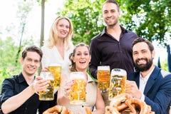 朋友或同事啤酒的在工作以后从事园艺 免版税库存图片