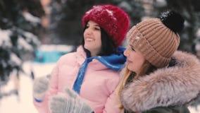朋友演奏投掷的愉快的妇女一起下雪冬日,慢动作 股票视频